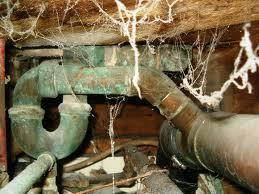 Toronto-plumber-Drain Trap-Cleaning-Replacing