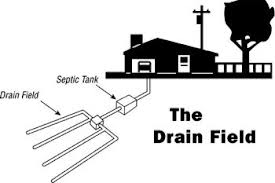 drain field-septic-system