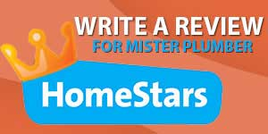 homestar write a review for mister plumber