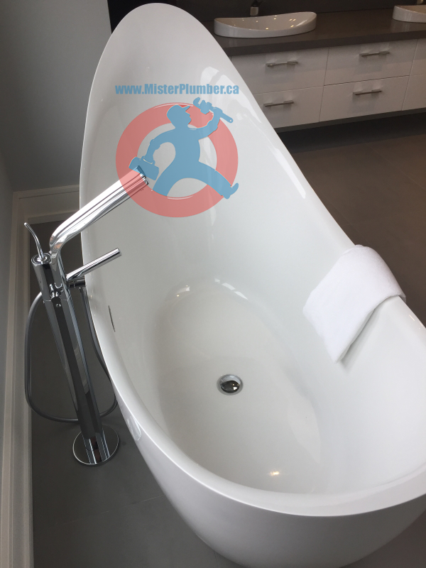 Contemporary free stand bathtub