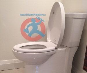 Modern-skirted-toilet-sm-min