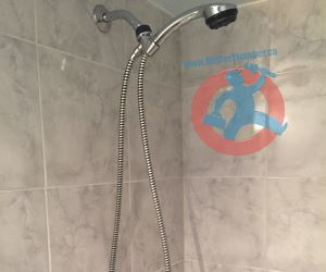 Shower head and handheld s