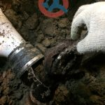 sewer-line-problems