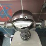 toilet-flush-valve-s