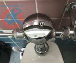 Toilet flush valve s