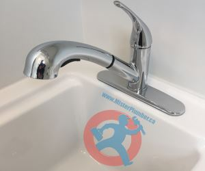 Laundry tub with pull out faucet s