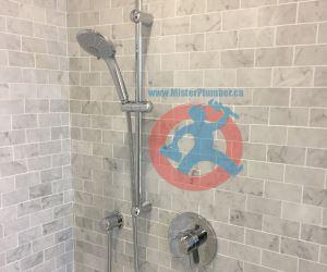 Master-washroom-shower-s