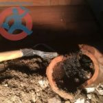 Removing of old clay pipe s