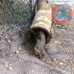 old-clay-pipe-with-roots-remove