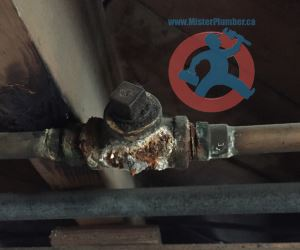 Corroded galvanized T connection s