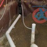 Primer for floor drain s