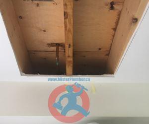 Cut out in ceiling to repair water leak s