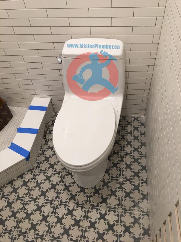Toronto toilet installation