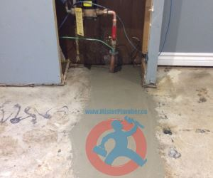 Restoration of concrete floor s