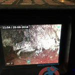 sewer-camera-show-grease-accumulation-2