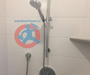 Shower control with sprayer on a bar s