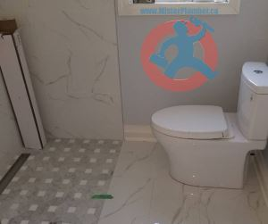 Toilet and barrier free shower s