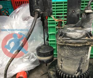 8 years old sump pump s