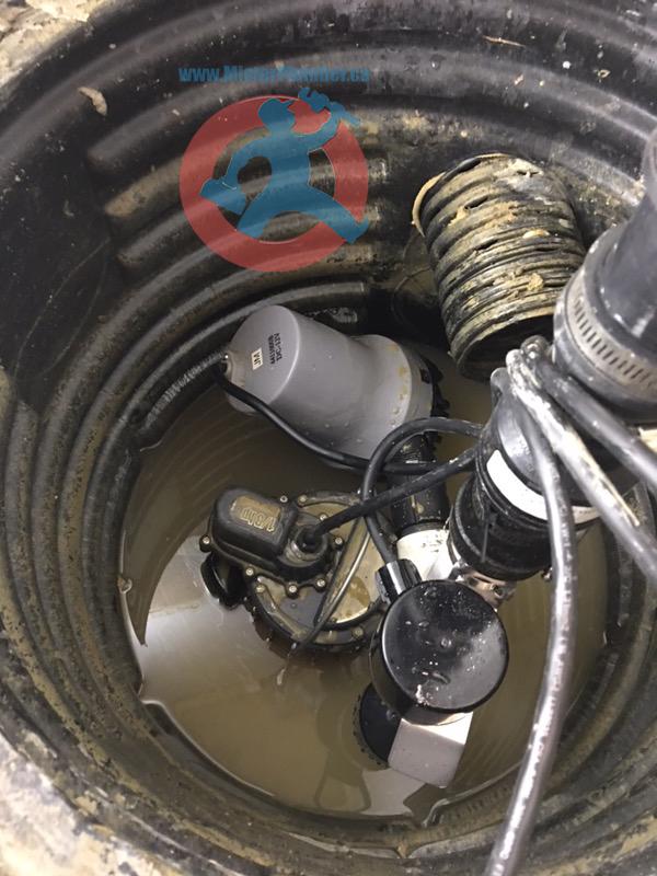 Combo sump pump
