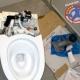 Sophisticated modern toilet flushing mechanism