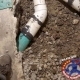 Main drain replacement